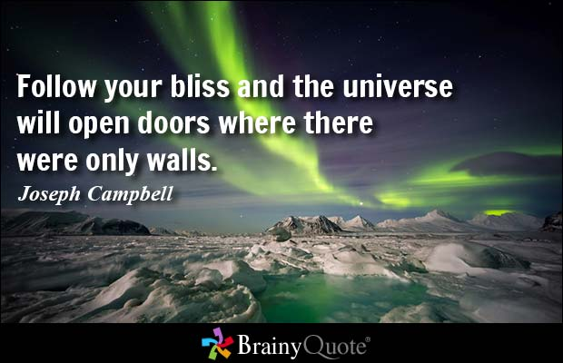 follow-your-bliss